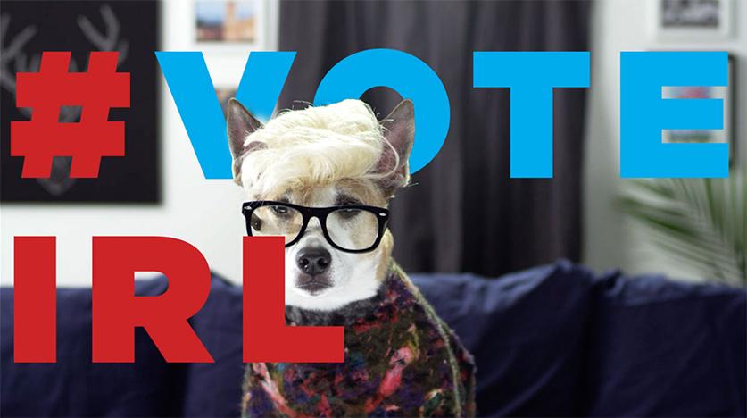 voteirl-google-cut